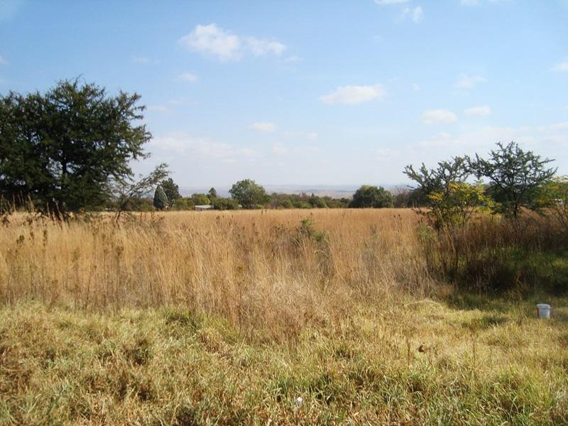 Laezonia property for sale. Ref No: 12796171. Picture no 17