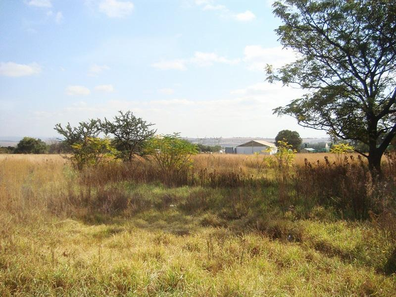 Laezonia property for sale. Ref No: 12796171. Picture no 3