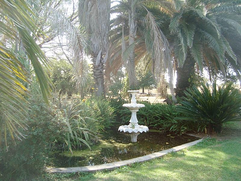 Laezonia property for sale. Ref No: 12796171. Picture no 21