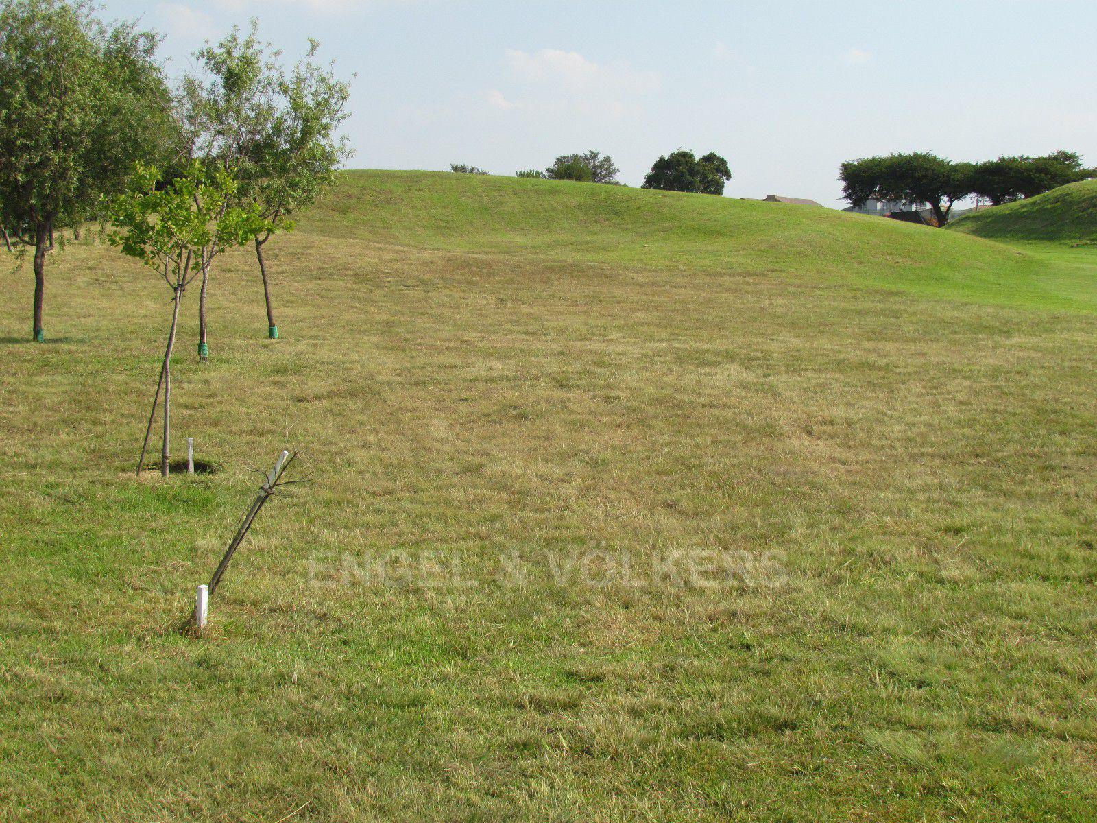 Blue Valley Golf Estate property for sale. Ref No: 13409006. Picture no 31