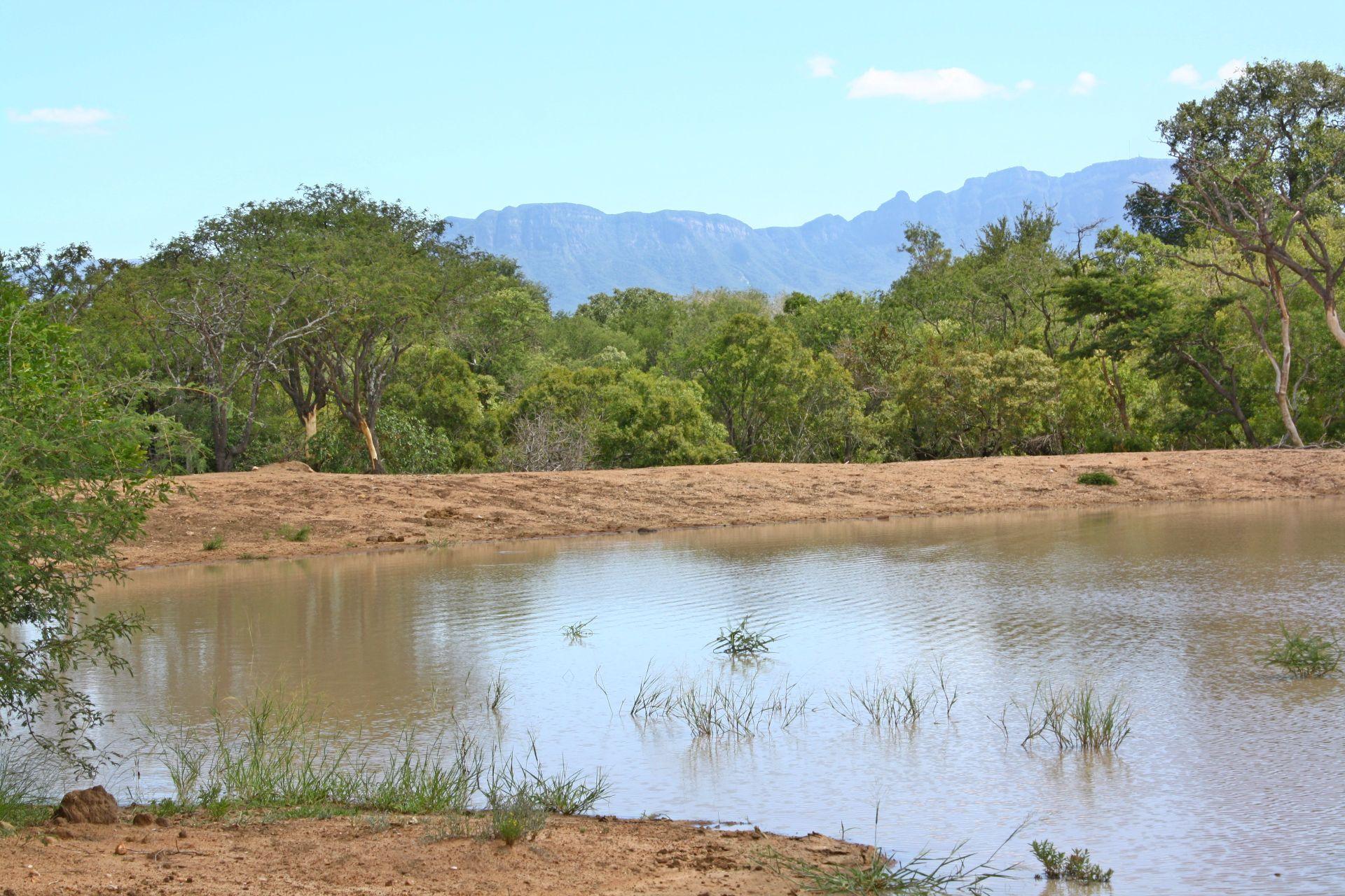 Moditlo Nature Reserve property for sale. Ref No: 2947660. Picture no 1