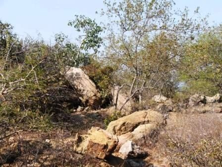 Lissataba Private Nature Reserve property for sale. Ref No: 2934791. Picture no 6