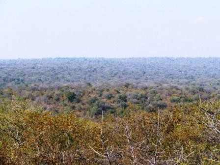 Lissataba Private Nature Reserve property for sale. Ref No: 2934791. Picture no 2