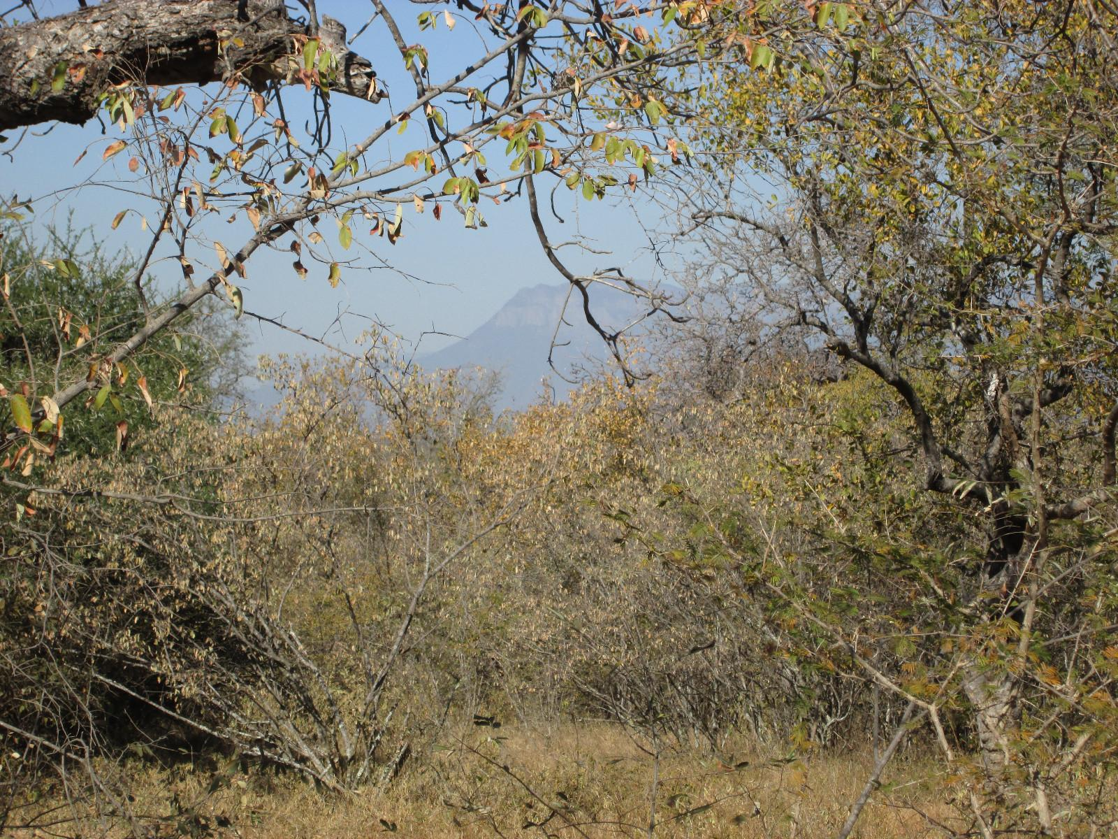 Raptors View Wildlife Estate property for sale. Ref No: 13229714. Picture no 1