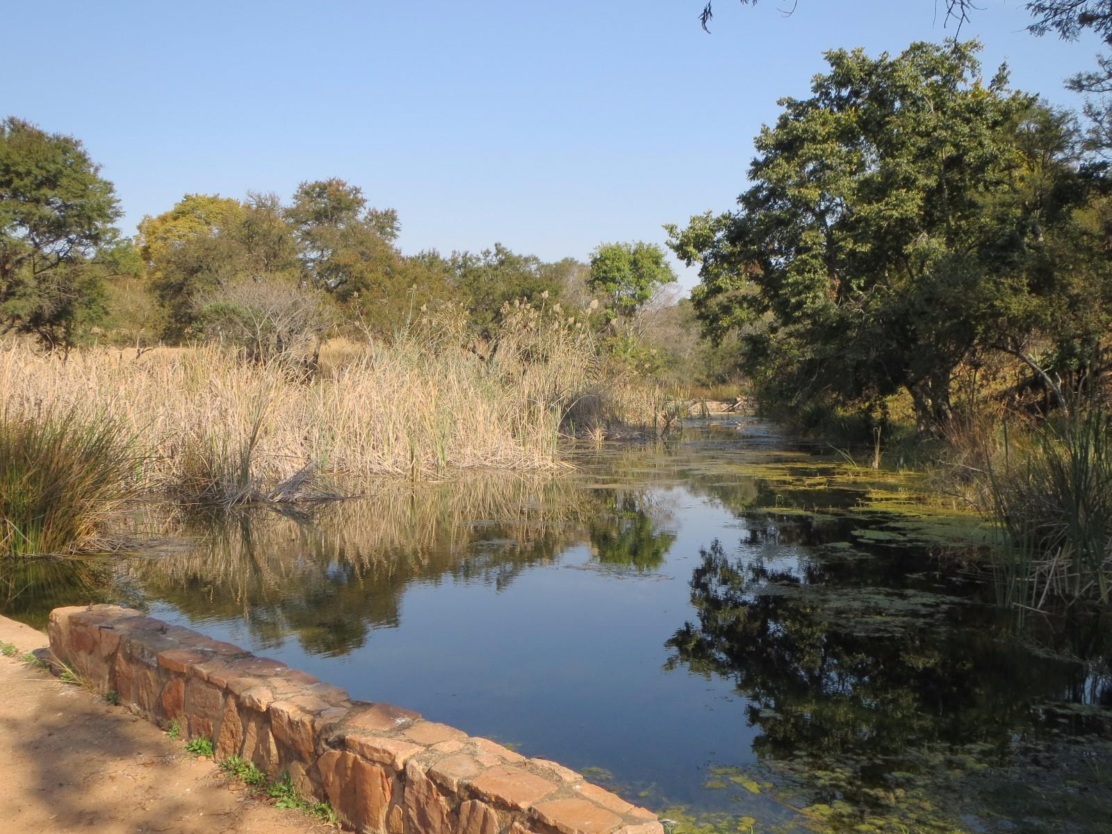Lydenburg property for sale. Ref No: 13350880. Picture no 18