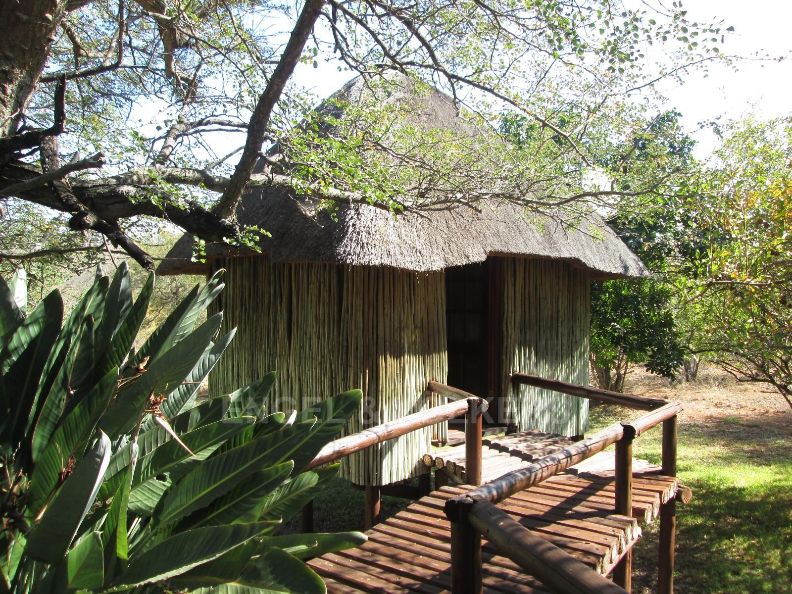 Ndlovumzi property for sale. Ref No: 13346693. Picture no 12