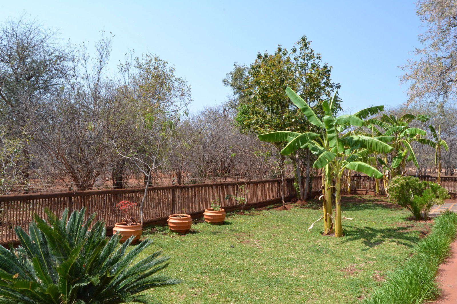 Hoedspruit Wildlife Estate property for sale. Ref No: 13390309. Picture no 21