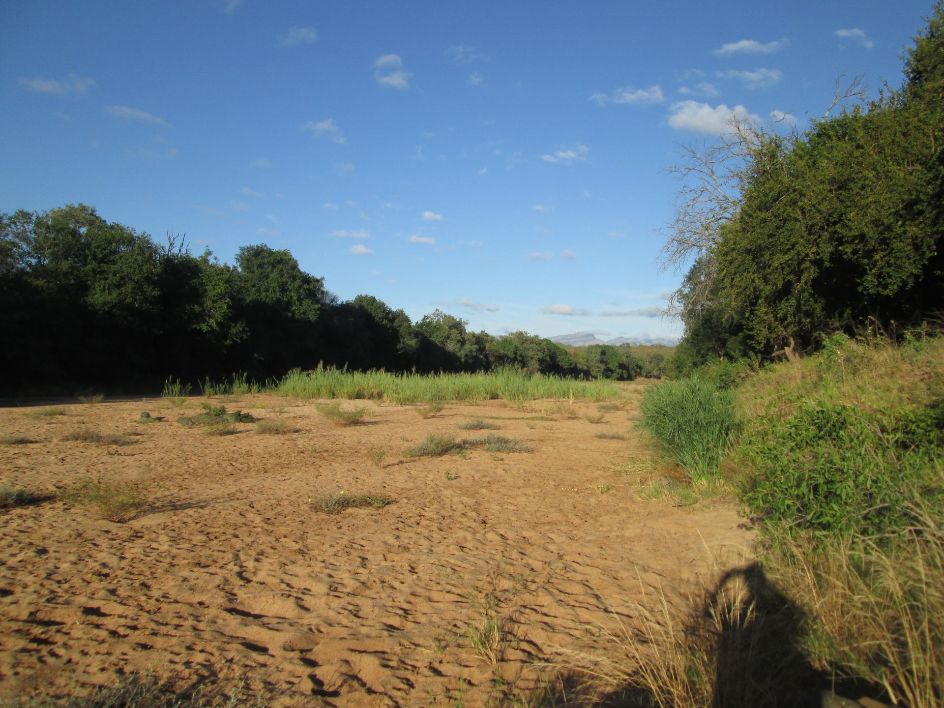 Hoedspruit, Raptors View Wildlife Estate Property  | Houses For Sale Raptors View Wildlife Estate, RAPTORS VIEW WILDLIFE ESTATE, Stand  property for sale Price:1,370,000