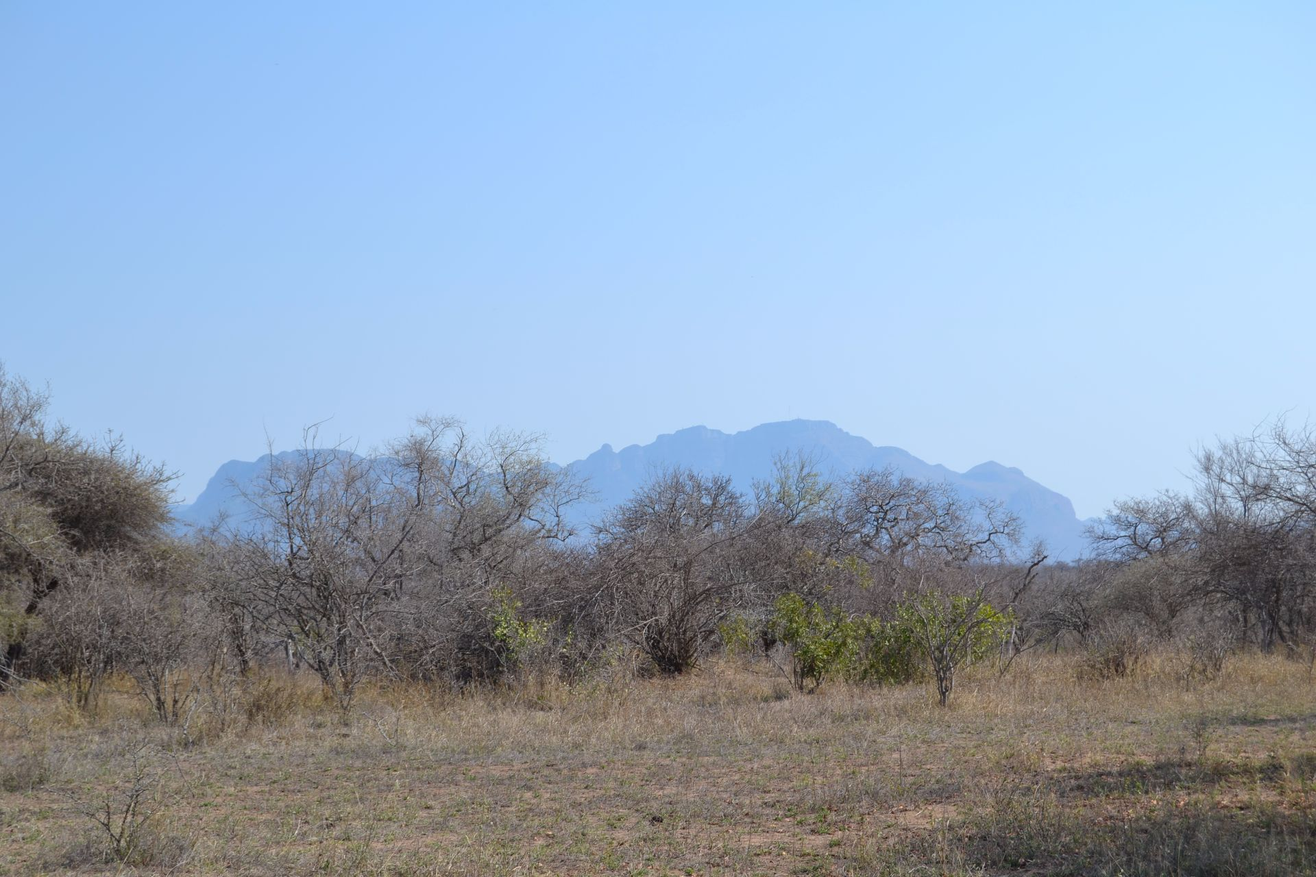 Hoedspruit, Moditlo Nature Reserve Property  | Houses For Sale Moditlo Nature Reserve, MODITLO NATURE RESERVE, Stand  property for sale Price:550,000