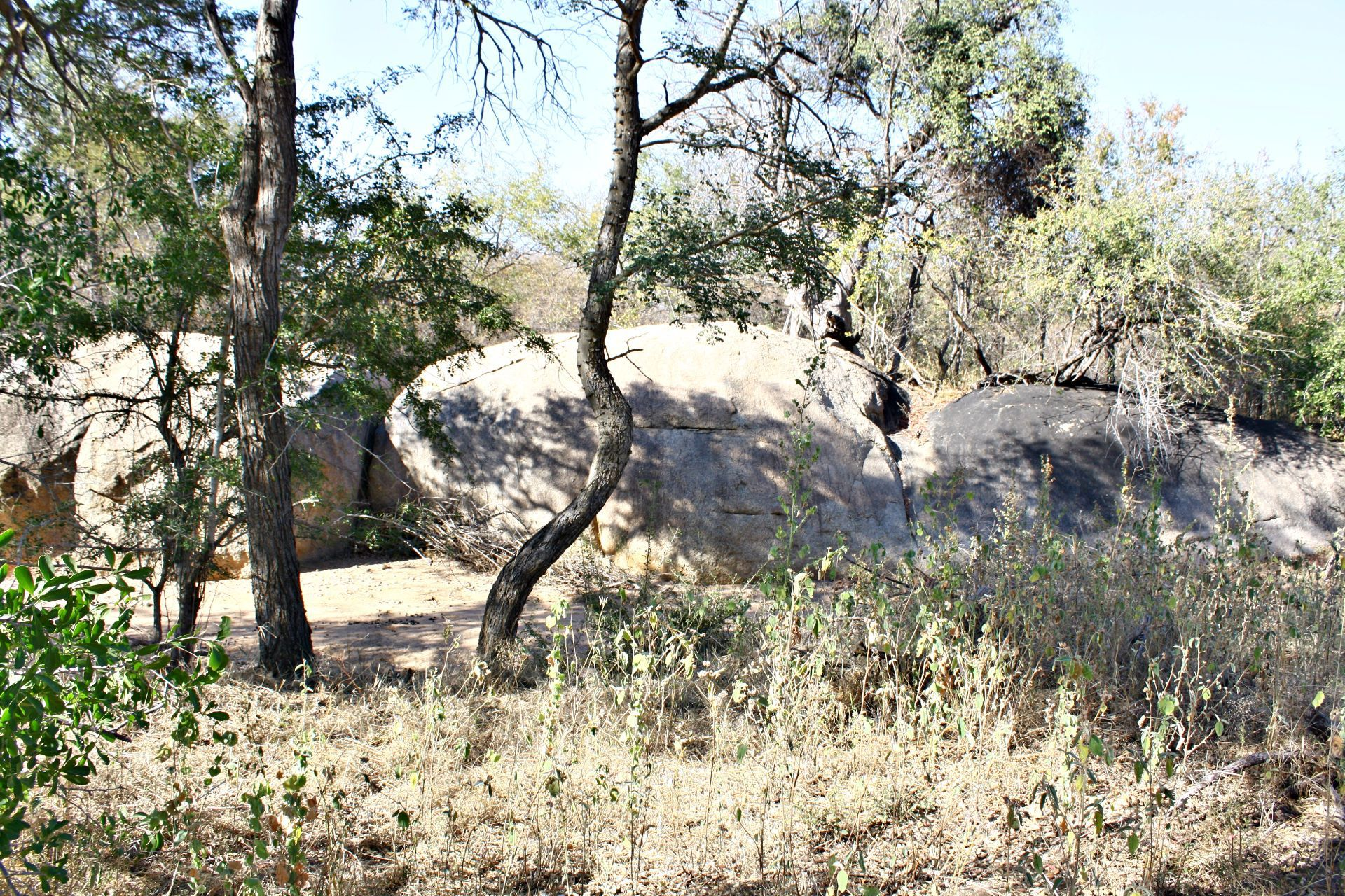 Hoedspruit, Leopard Rock Nature Reserve Property  | Houses For Sale Leopard Rock Nature Reserve, LEOPARD ROCK NATURE RESERVE, Stand  property for sale Price:710,000