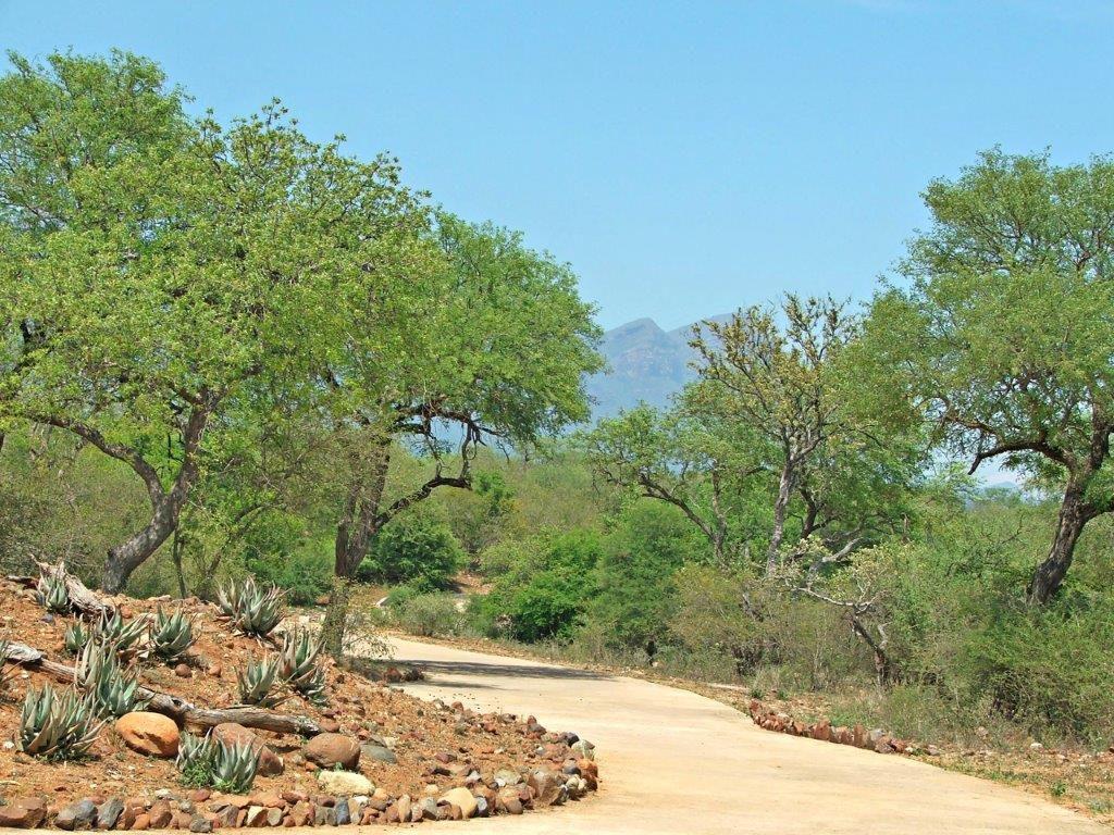 Hoedspruit, Blyde Wildlife Estate Property    Houses For Sale Blyde Wildlife Estate, BLYDE WILDLIFE ESTATE, Stand  property for sale Price:380,000