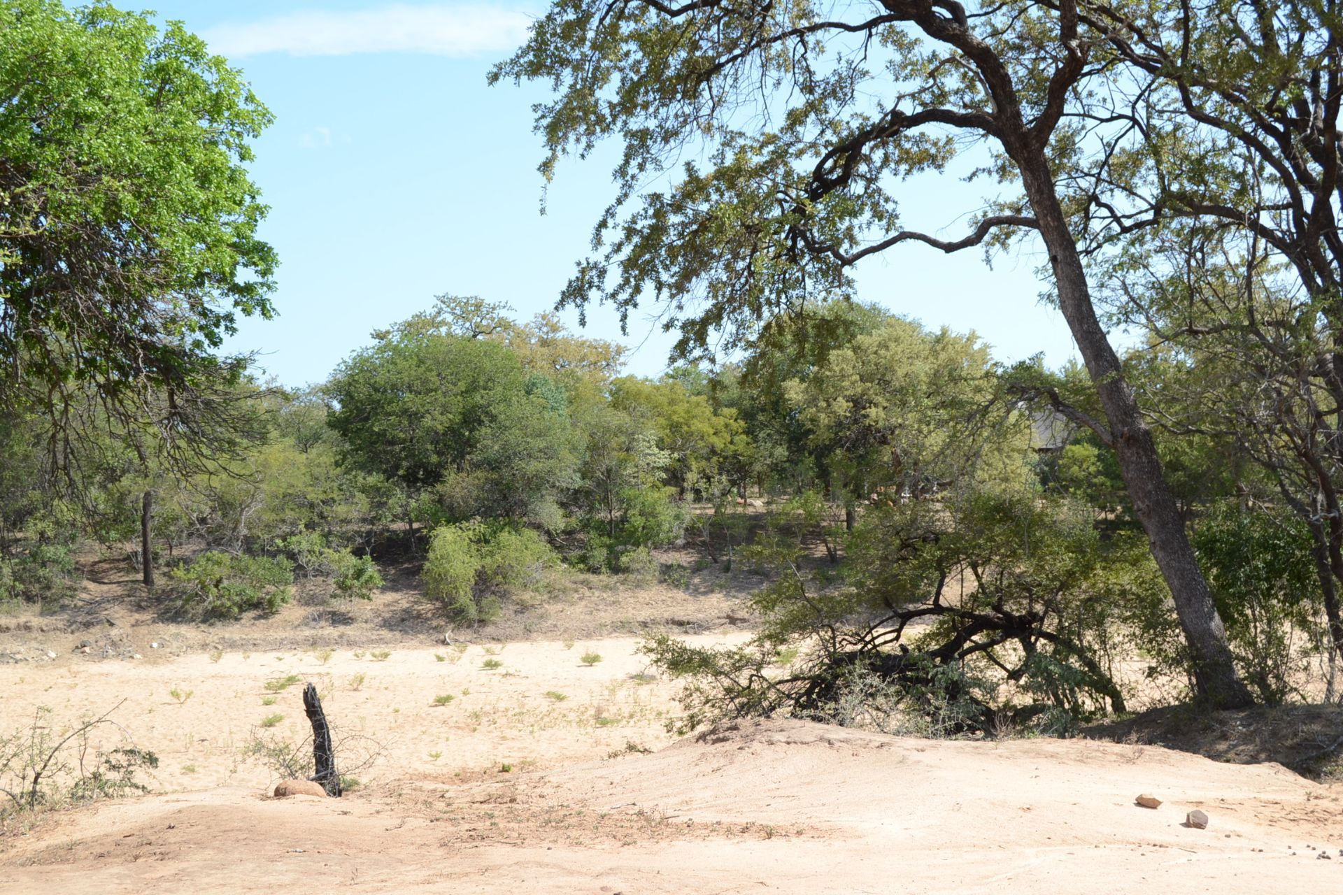 Hoedspruit, Raptors View Wildlife Estate Property  | Houses For Sale Raptors View Wildlife Estate, RAPTORS VIEW WILDLIFE ESTATE, Stand  property for sale Price:875,000