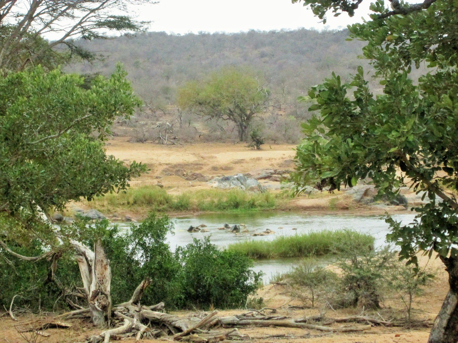 Hoedspruit, Grietjie Private Nature Reserve Property    Houses For Sale Grietjie Private Nature Reserve, GRIETJIE PRIVATE NATURE RESERVE, Stand  property for sale Price:5,300,000
