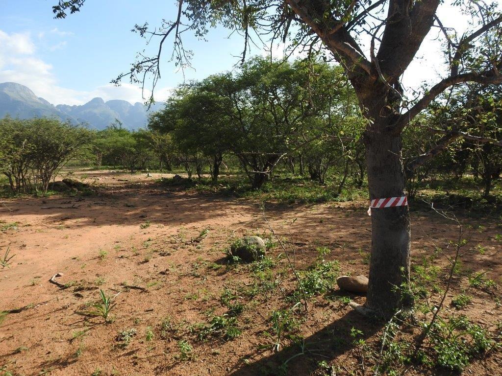 Hoedspruit, Blyde Wildlife Estate Property  | Houses For Sale Blyde Wildlife Estate, BLYDE WILDLIFE ESTATE, Stand  property for sale Price:440,000