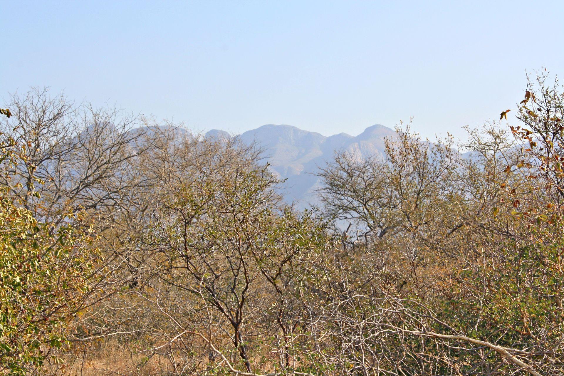 Hoedspruit, Blyde Wildlife Estate Property  | Houses For Sale Blyde Wildlife Estate, BLYDE WILDLIFE ESTATE, Stand  property for sale Price:300,000