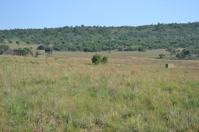 Potchefstroom property for sale. Ref No: 12785487. Picture no 9
