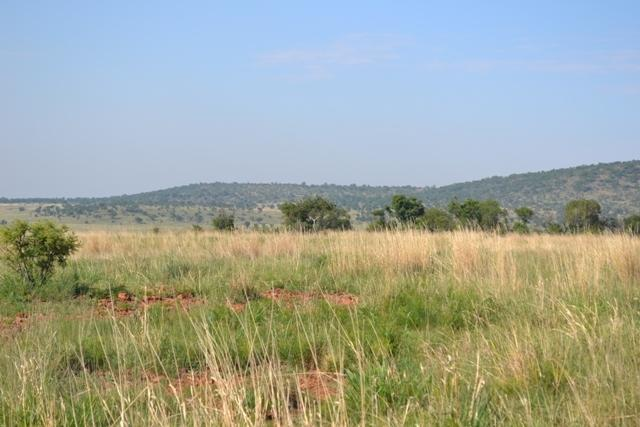Potchefstroom property for sale. Ref No: 12785487. Picture no 16