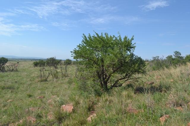 Potchefstroom property for sale. Ref No: 12785487. Picture no 26