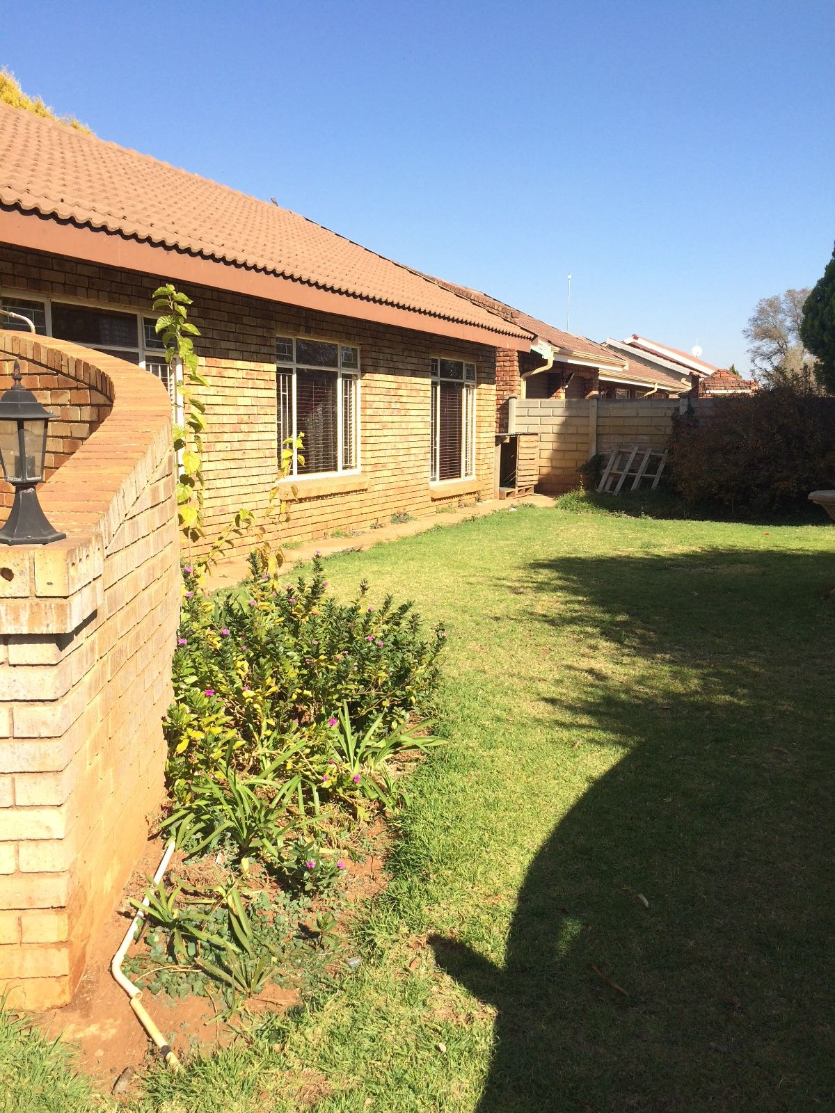 Property and Houses to rent in Dassie Rand, House, 3 Bedrooms - ZAR ,  8,00*,M
