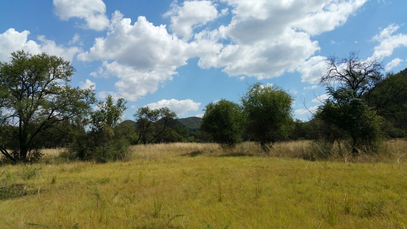Vredefort property for sale. Ref No: 13382605. Picture no 12