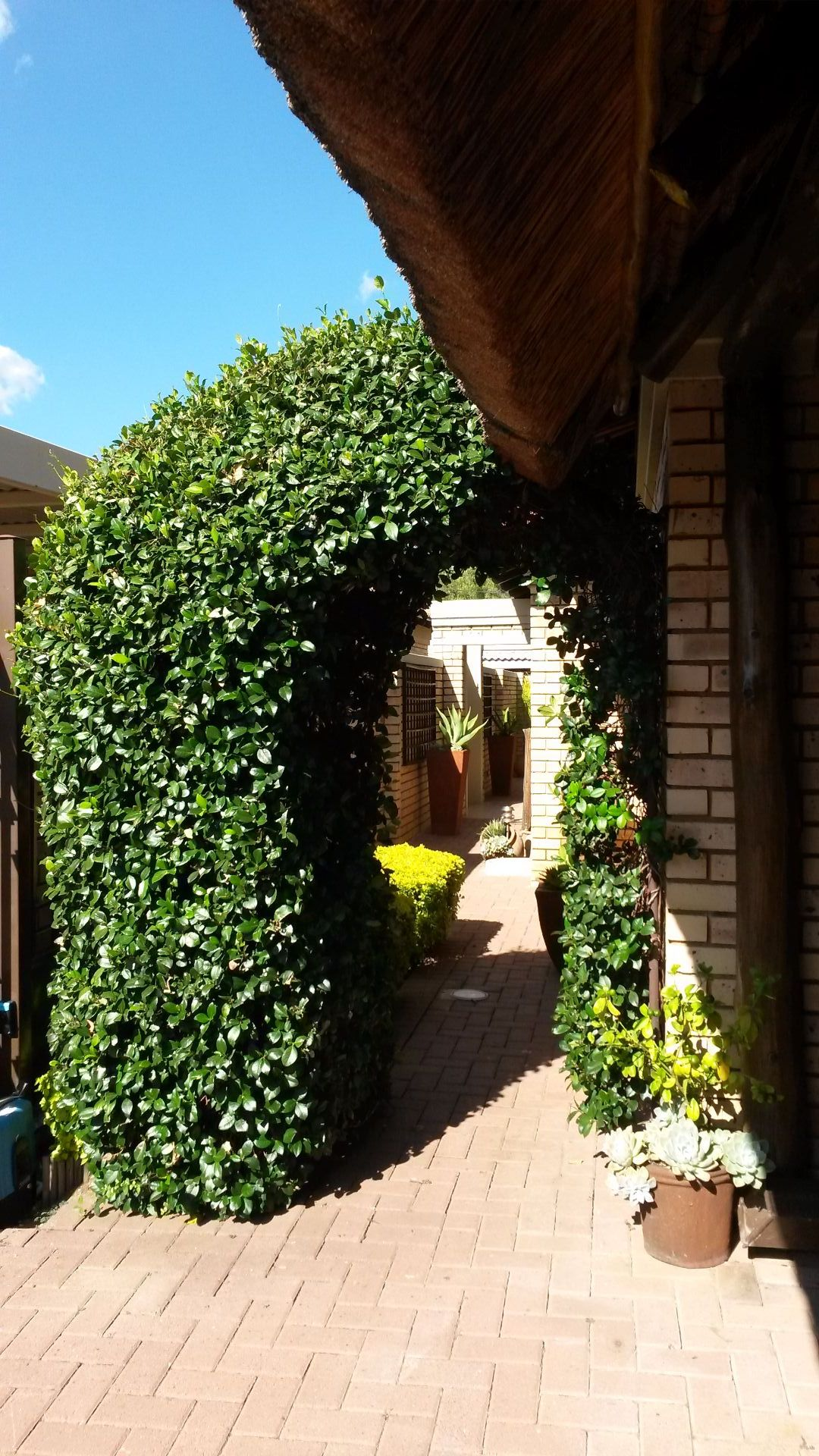 Potchefstroom Central property for sale. Ref No: 13463328. Picture no 3