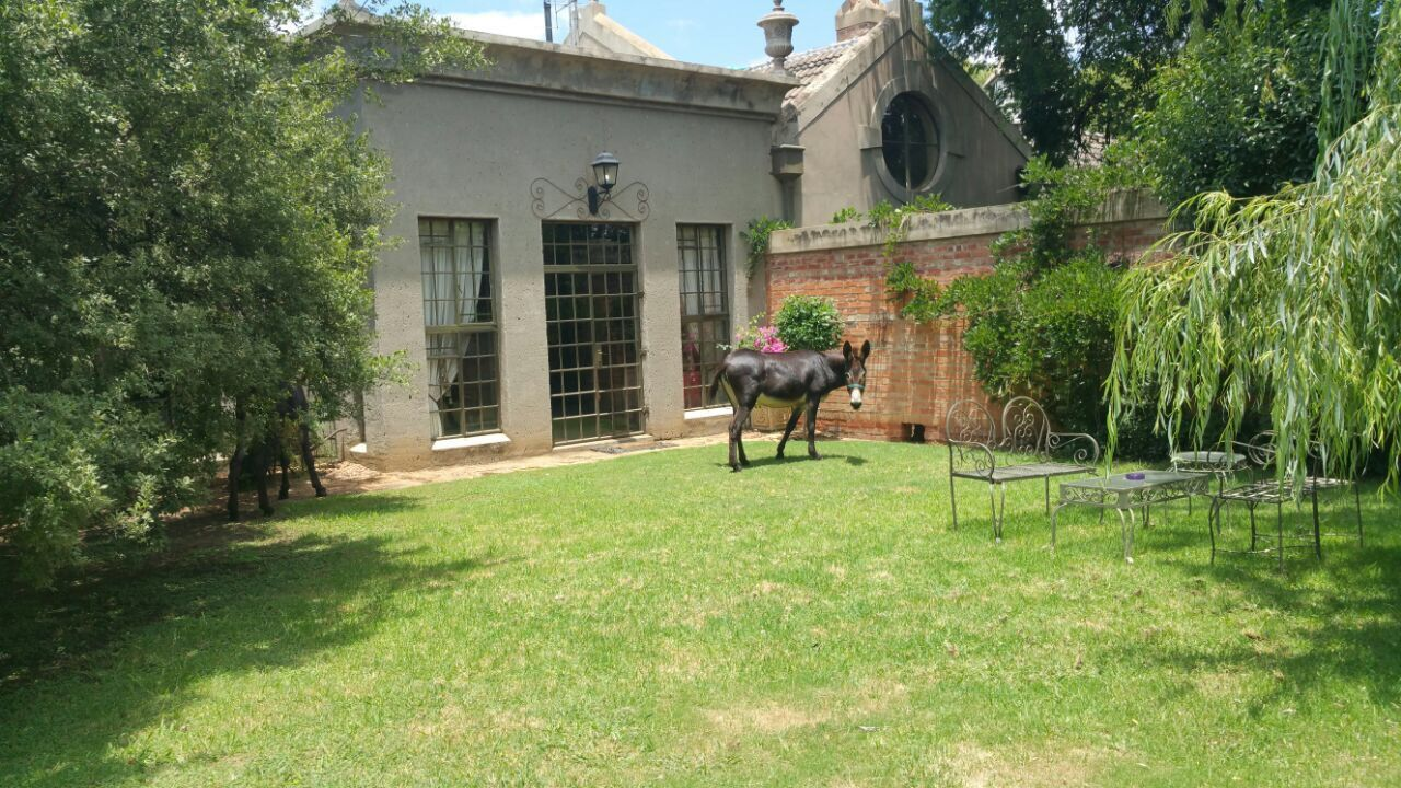Potchefstroom for sale property. Ref No: 13492321. Picture no 9