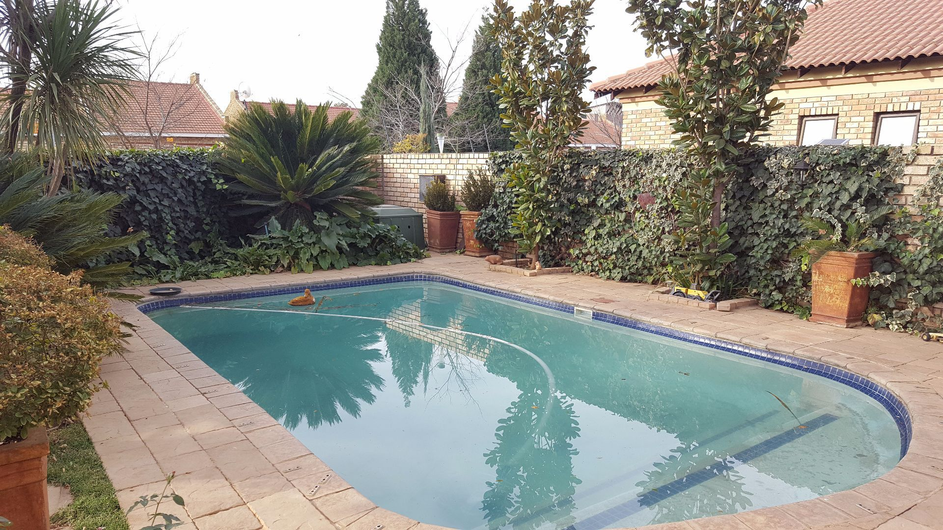 Baillie Park property for sale. Ref No: 13499359. Picture no 5