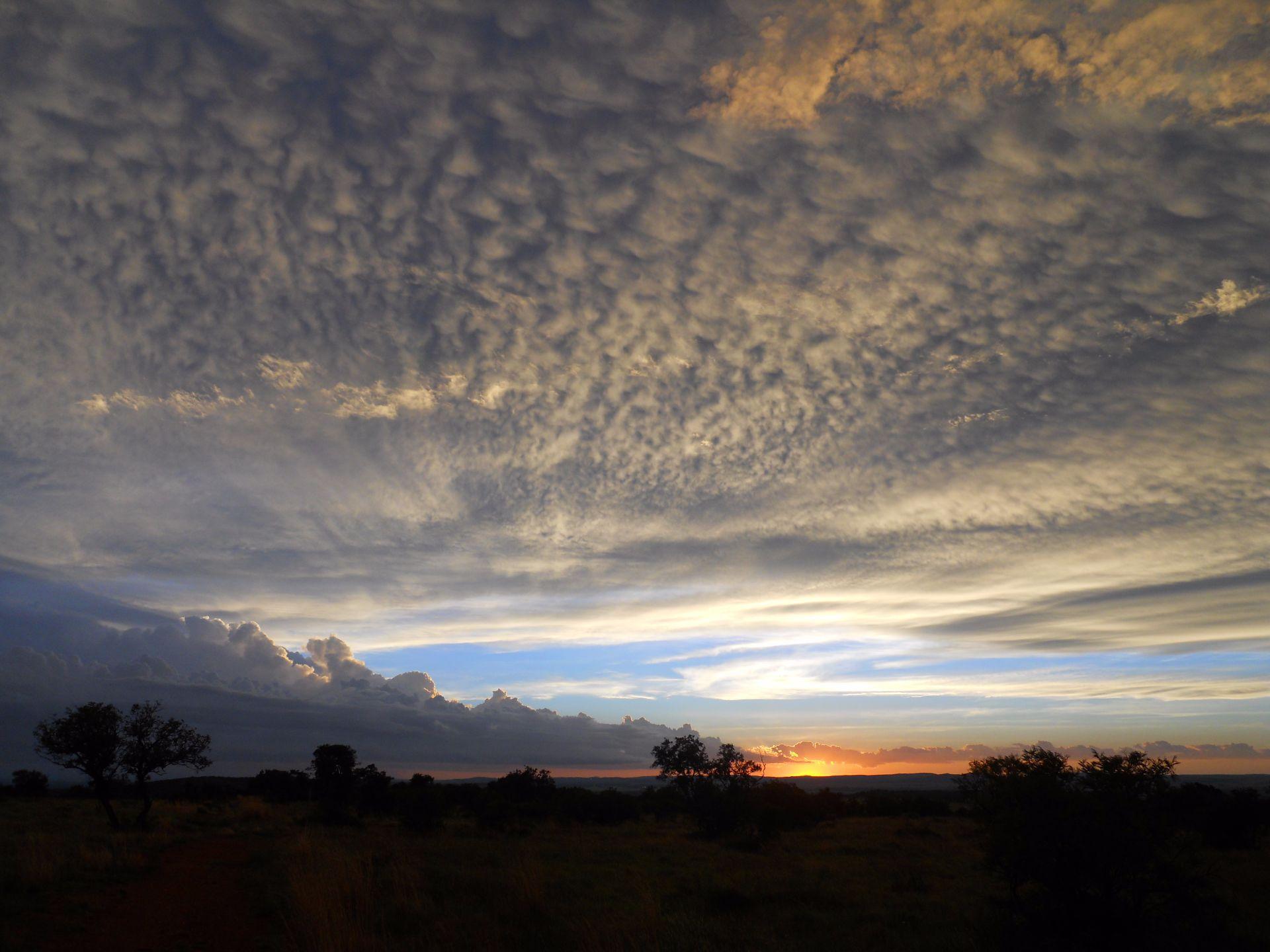 Potchefstroom, Lekwena Wildlife Estate Property  | Houses For Sale Lekwena Wildlife Estate, LEKWENA WILDLIFE ESTATE, Stand  property for sale Price:948,000