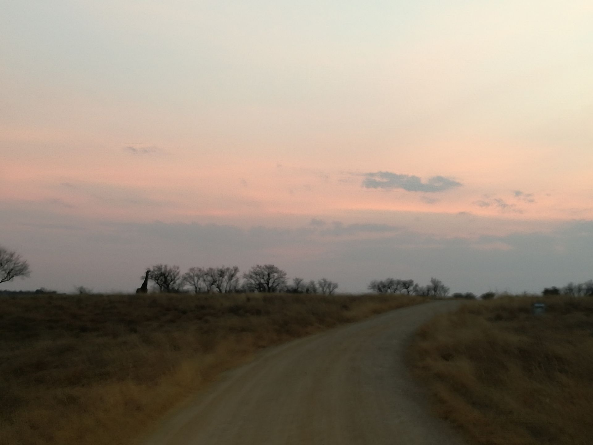 Potchefstroom, Lekwena Wildlife Estate Property  | Houses For Sale Lekwena Wildlife Estate, LEKWENA WILDLIFE ESTATE, Stand  property for sale Price:1,060,000
