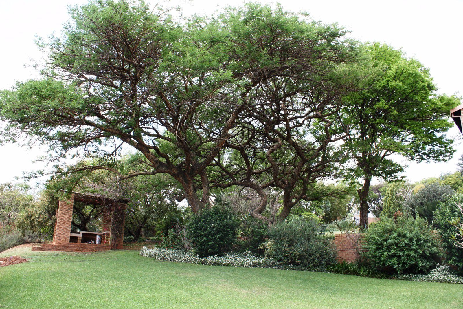 Ruimsig property for sale. Ref No: 13416193. Picture no 33