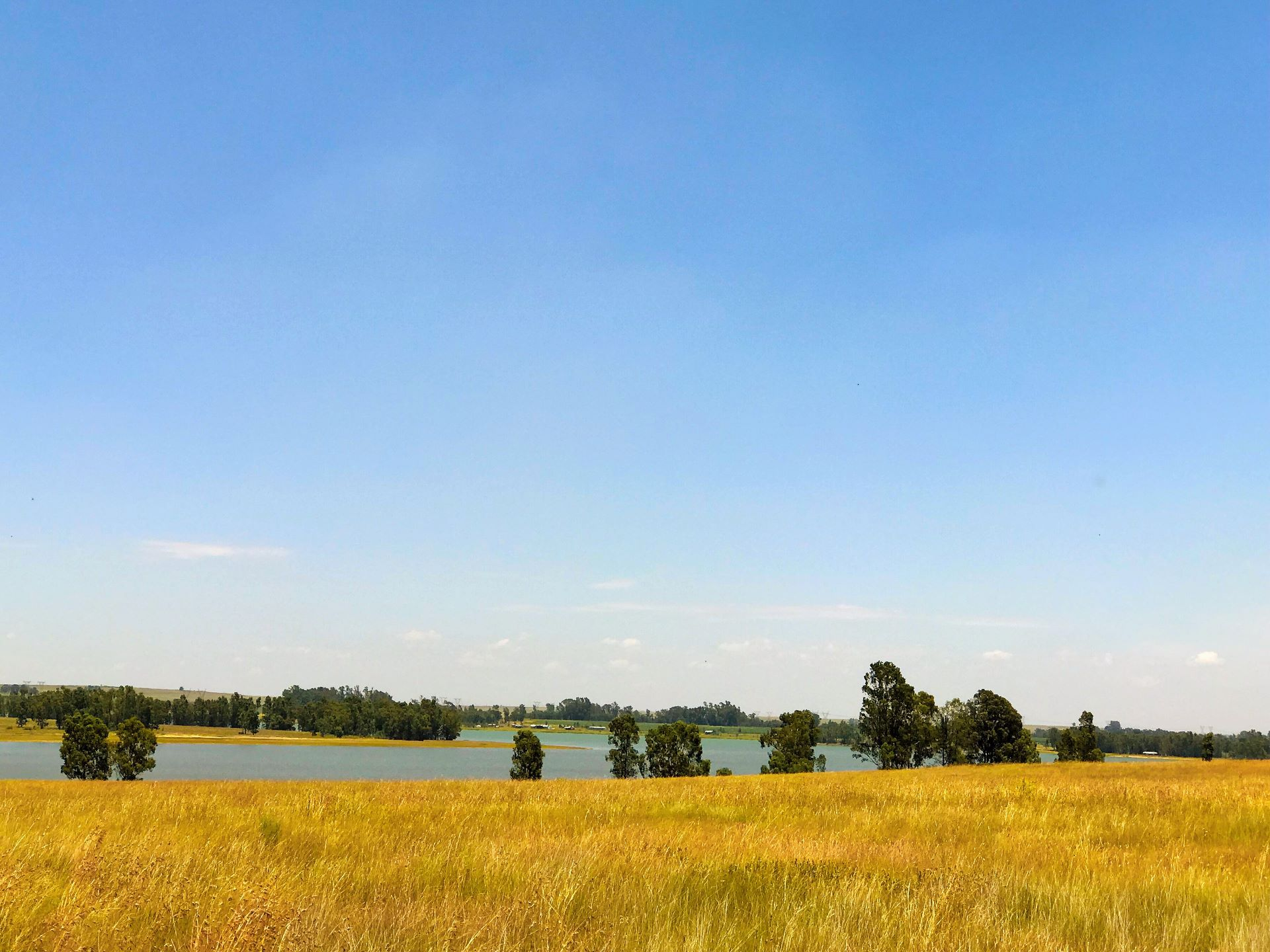 Vaal Dam, Vaal Marina Property  | Houses For Sale Vaal Marina, VAAL MARINA, Farms  property for sale Price:29,999,999