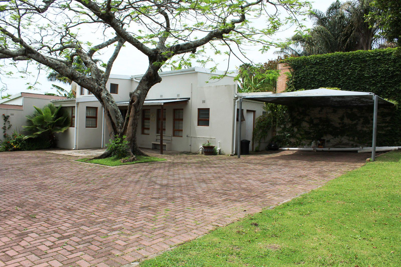 Selborne property for sale. Ref No: 13454556. Picture no 4