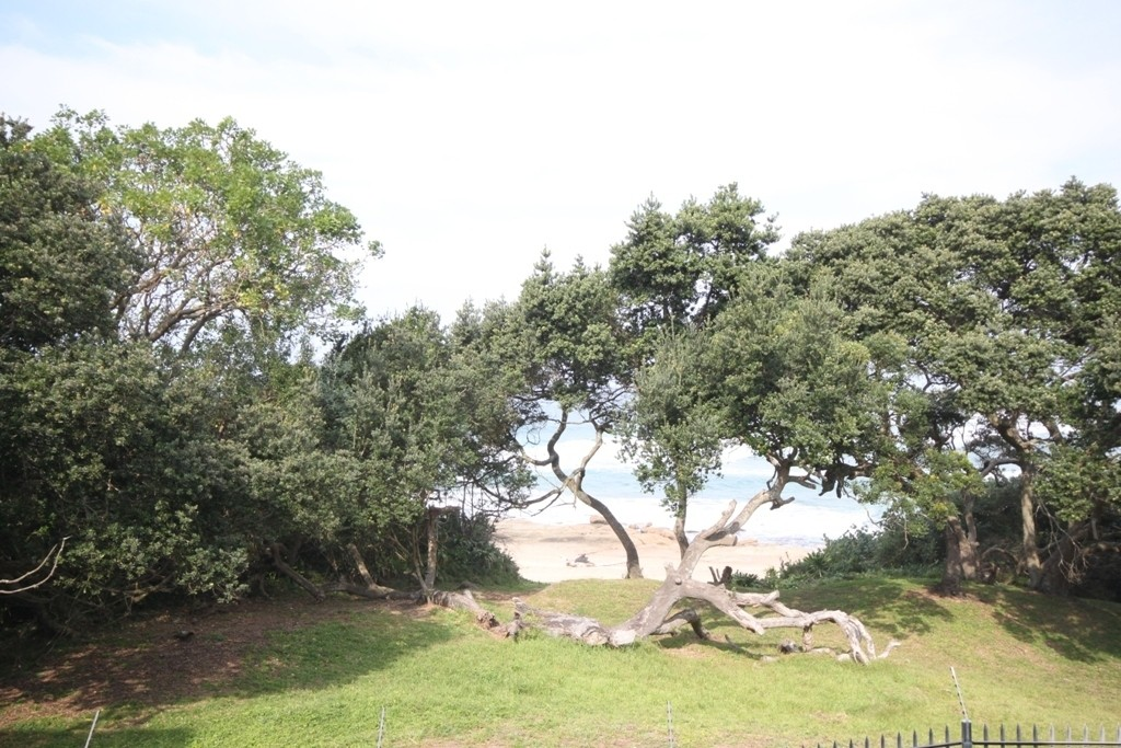 Shelly Beach property for sale. Ref No: 2697552. Picture no 9