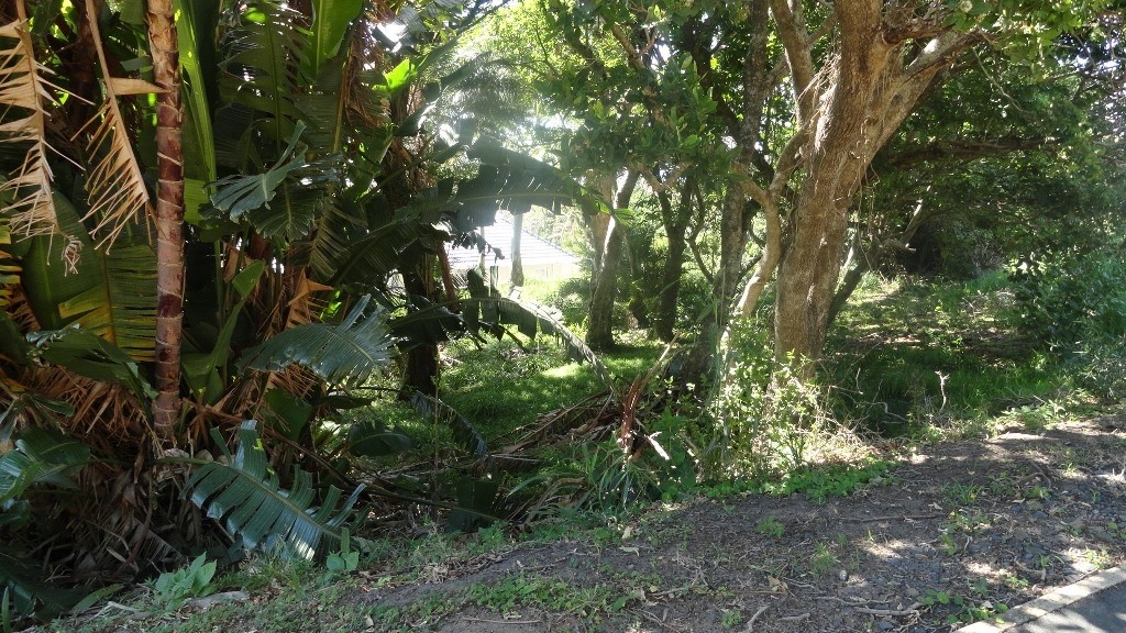 Shelly Beach property for sale. Ref No: 2908572. Picture no 3