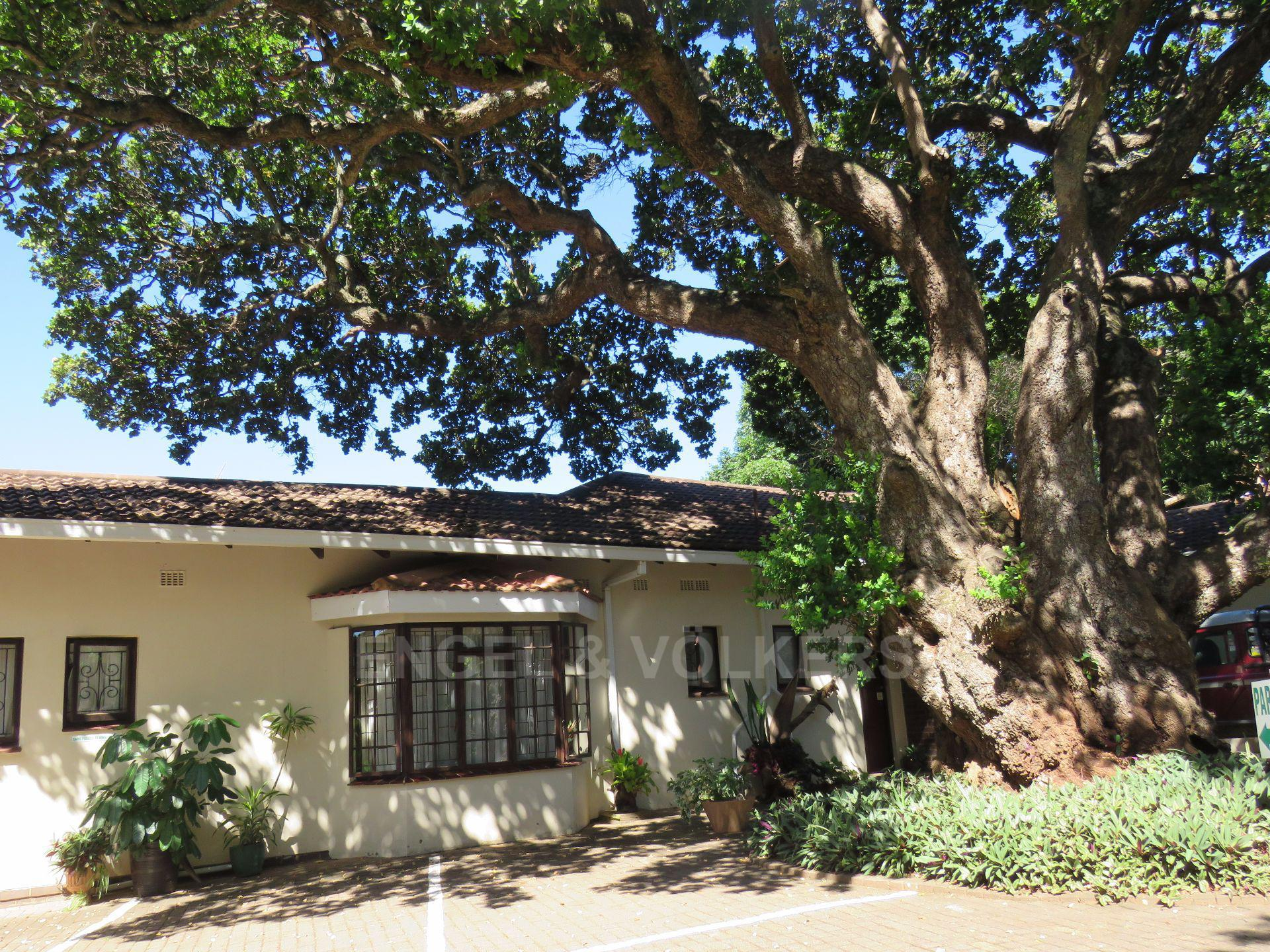 Umtentweni property for sale. Ref No: 13565833. Picture no 3