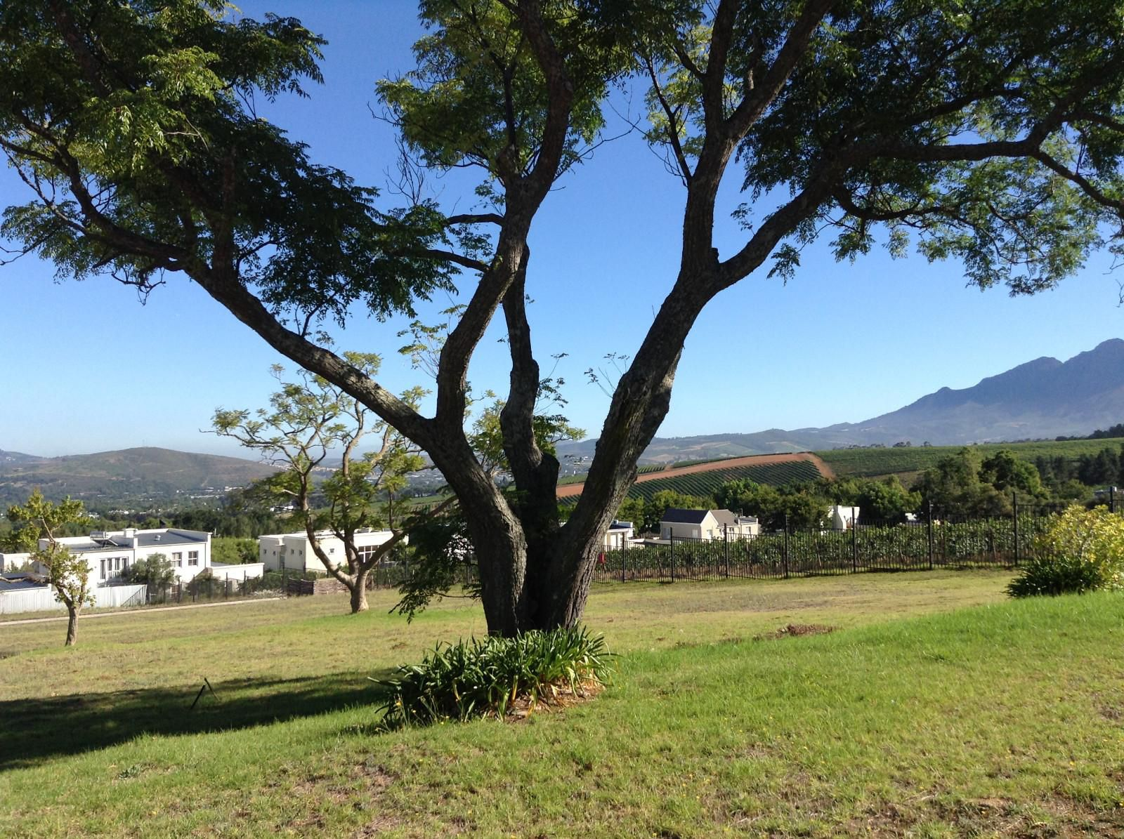 Property and Houses for sale in Paradyskloof, Stand - ZAR 4,700,000
