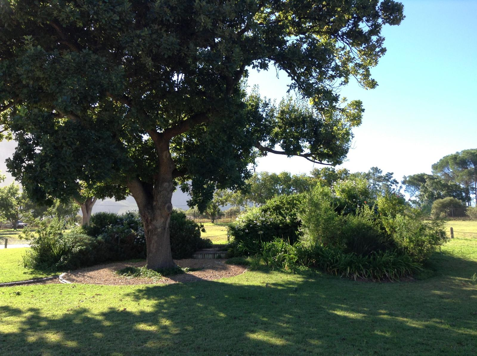 Paradyskloof property for sale. Ref No: 13537969. Picture no 16