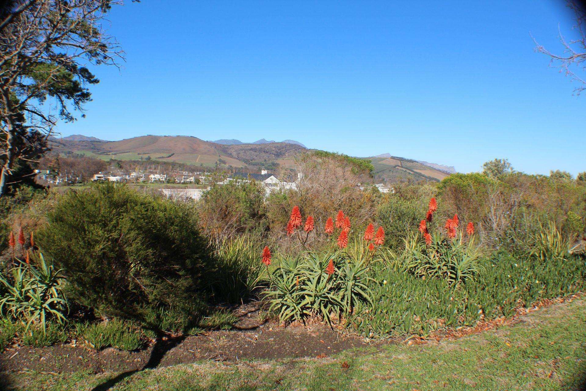 Erinvale Golf Estate property for sale. Ref No: 13509371. Picture no 33