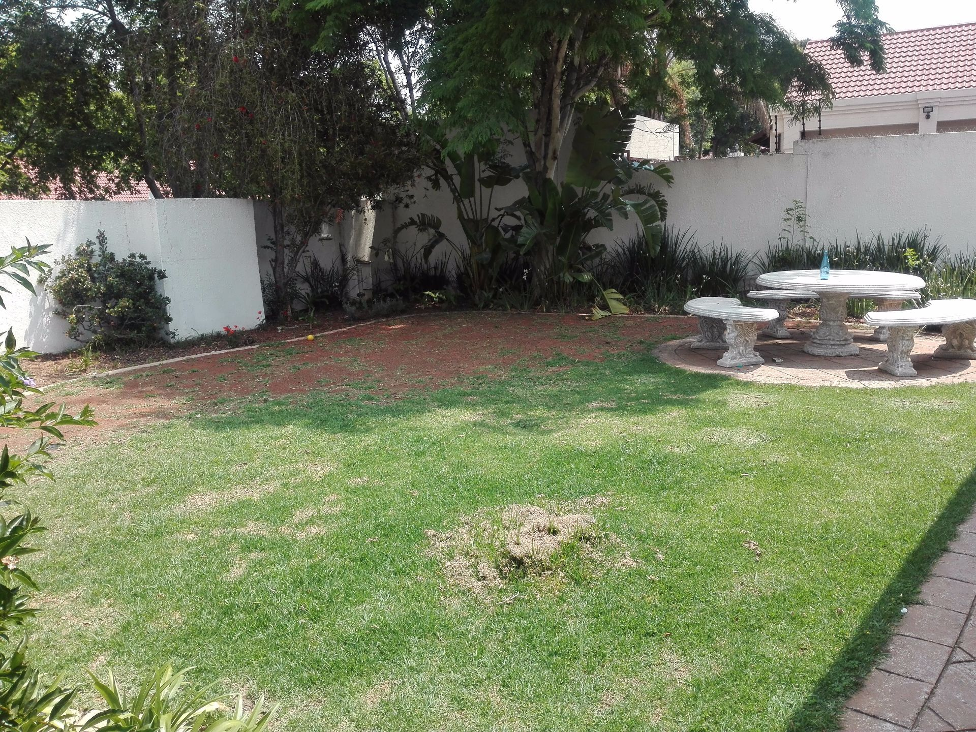 Randburg, Olivedale Property  | Houses To Rent Olivedale, OLIVEDALE, House 4 bedrooms property to rent Price:, 15,00*