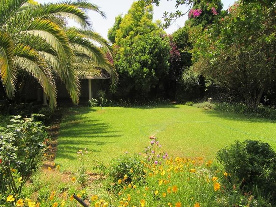 Garden Lonehill (Copy) (Copy) (Copy).JPG
