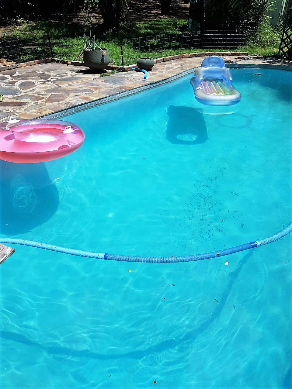 Trish-pool 1.jpg