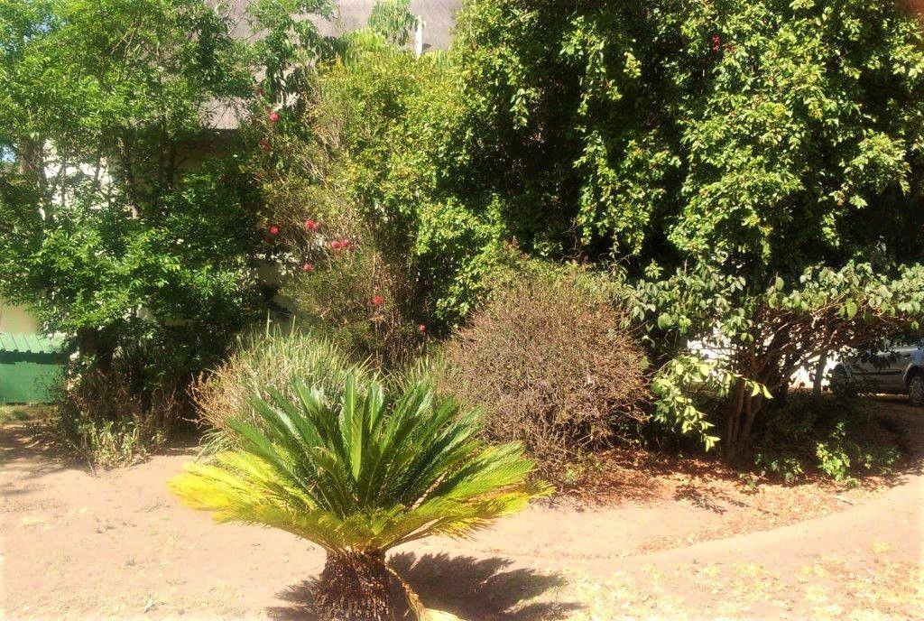 Main house garden (2).jpg